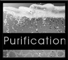 SARAN 0014 PURIFICATION B